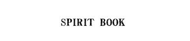spirit book PT